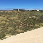 looking back to the house from the dune