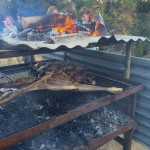 lamb and wallaby on the grill
