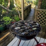 mussels on the bbq