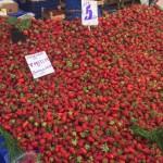 strawberries - $2.50 a kilo!