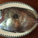 john dory fresh from the local fishing boat