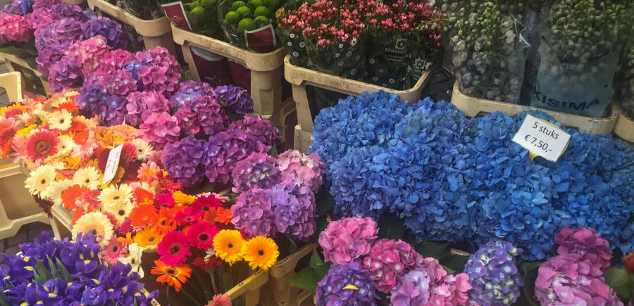 flower stall, utrecht