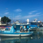 fishing harbour at latchi