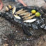 grilled mullet & lime